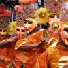 Masskara Festival 2009 & Tour of Negros Occidental