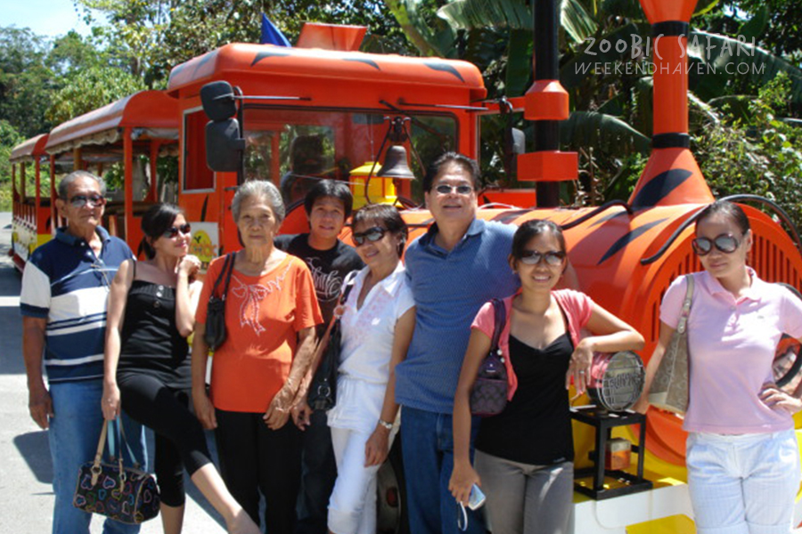 Zoobic Safari Group Tour