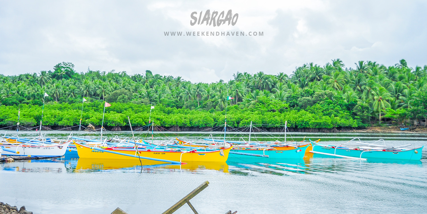 Mangroves and Boats in Siargao Pier