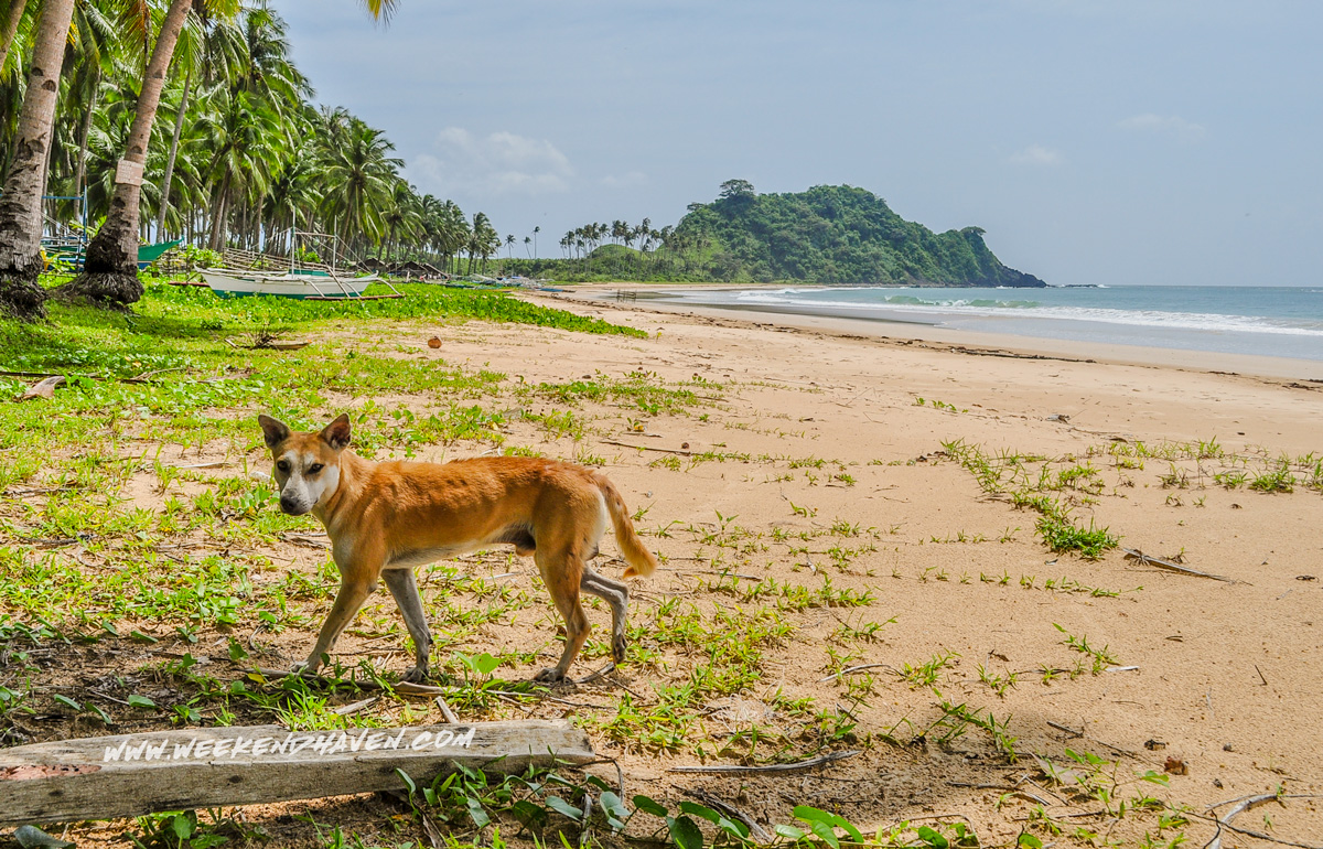 Nacpan Beach in El Nido