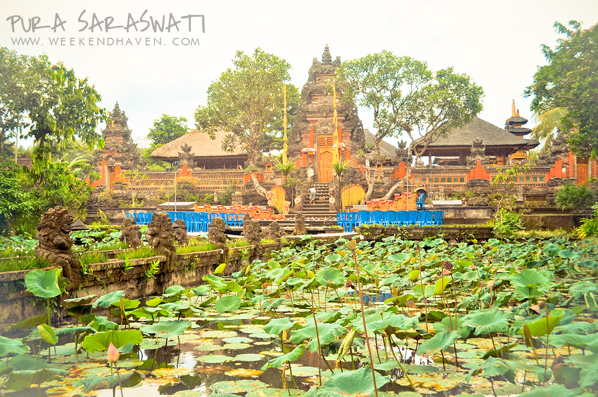 Lotus Pond at Pura Saraswati Ubud