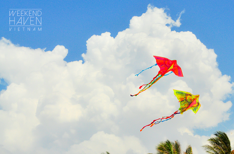 Colorful Kites in Mui Ne